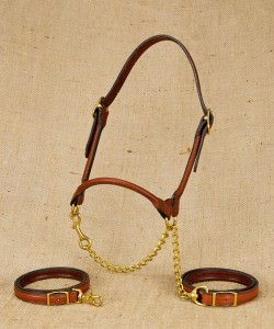 Rolled leather show halter for beef cattle