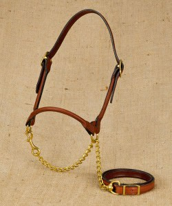 Rolled Show Halter for Dairy Cattle