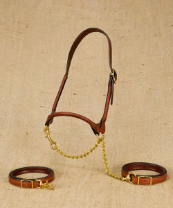 Rolled leather show halter with single buckle for beef cattle