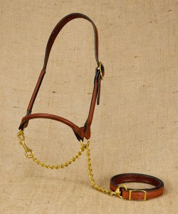 Rolled leather halter for dairy cattle