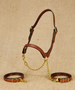 Flat show halter for beef cattle