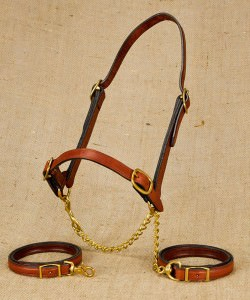 Plain nose show halter for beef cattle
