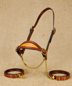 Shaped nose show cattle halter