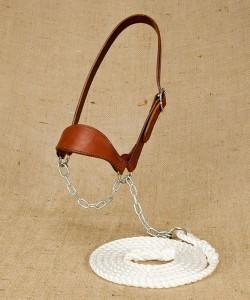 Wide nosed leather work halter and lead