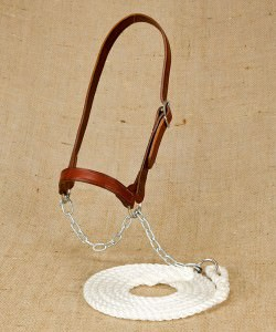 Plain nosed leather work halter and lead