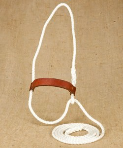 Silver Rope Halter with Narrow Leather Nose Band