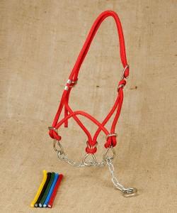 Chain halter halter