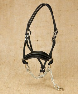 Chain Halter with Leather Nose Band